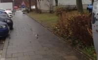 Radweg Ende Schild auf einem Gehweg.